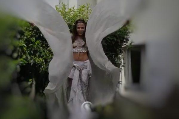 échassière ailes blanches